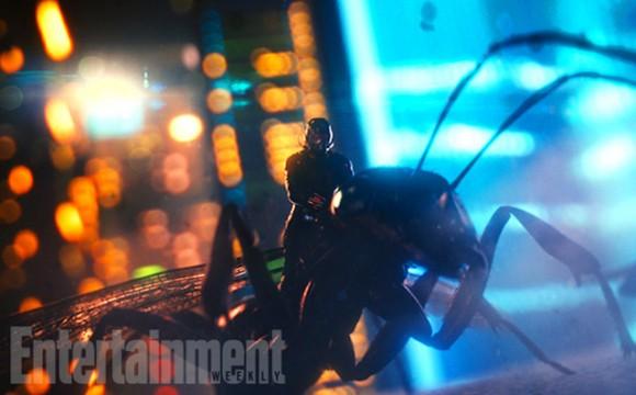 fourmi-volante-antman