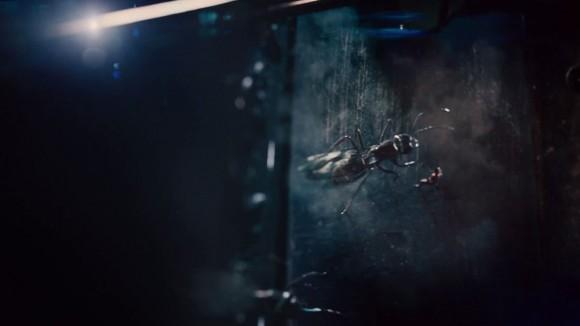 flying-ant-man