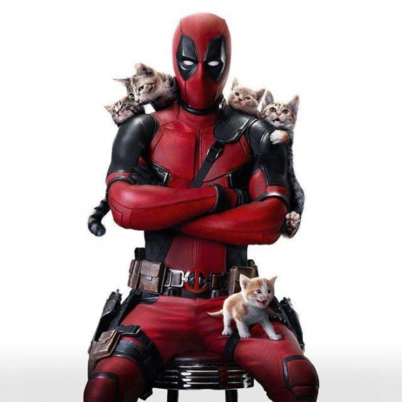 deadpool-cats-image